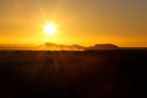 Solitaire in Namibië van Edith Büscher