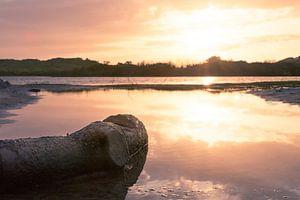 zonsondergang in het vogelmeer
