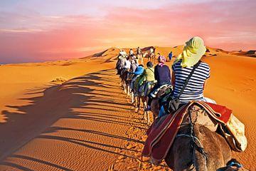 Kameel caravan door de zandduinen van de Sahara woestijn in Marokko van Nisangha Masselink