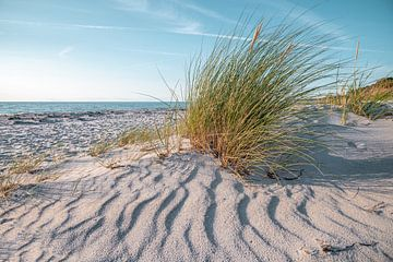 Op het strand van de Baltische Zee van Steffen Gierok