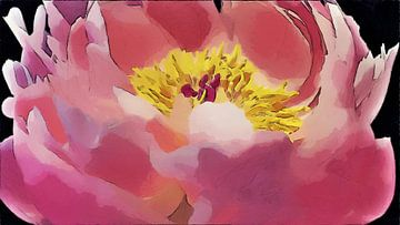 Opengaande Pioen - Roze en Geel - Schilderij