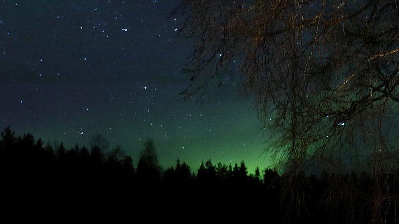 Noorderlicht von Fields Sweden
