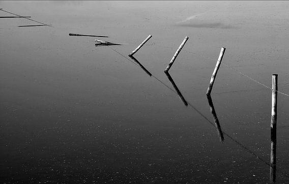 Less is more... van Ellen Driesse