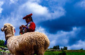 Lama und mächtige, traditionell gekleidete Frau in Cusco, Peru von John Ozguc