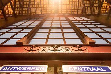 Antwerpen Centraal sur Sophie Wils