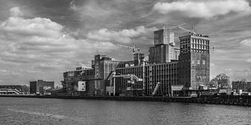 Rotterdam Rijnhaven van Emajeur Fotografie