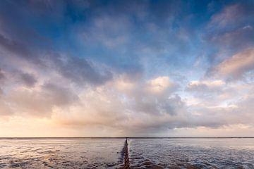 Wellenbrecher in der friesischen Salzwiese bei Ternaard von Ton Drijfhamer