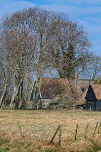 Boerderij in Noord Holland tussen bomen die nog niet in blad staan.