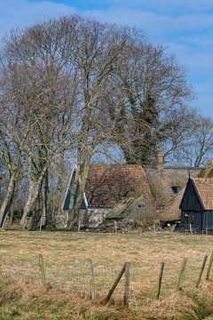 Boerderij in Noord Holland tussen bomen die nog niet in blad staan. van