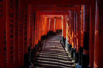Fushimi Inari van Bas Rutgers