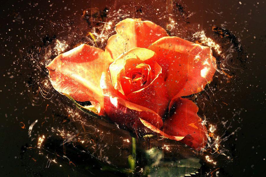 Summer rose in love van Dagmar Marina