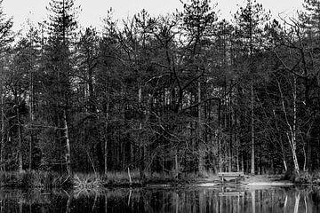 een bankje bij het meer von Marc Goldman