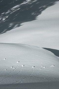 Schaduwen in de Sneeuw van Sophia Eerden