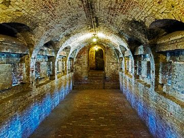 Fort Napolion van Wilfred Roelofs