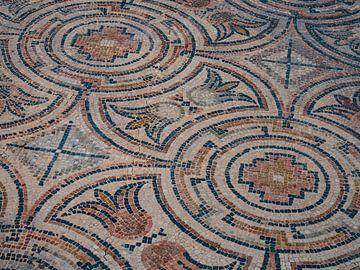 Romeins mozaïek van Martijn Joosse