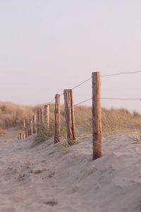 Beachcombing dans les dunes I Bloemendaal, Noord-Holland I Couleurs pastel I Photographie sur Floris Trapman