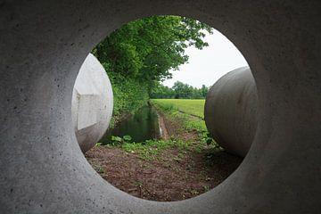 Design by nature (8917) van Tot Kijk fotografie: natuur aan de muur