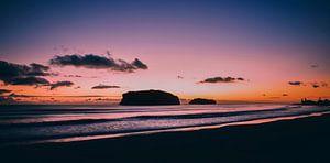 Hauturu Island van