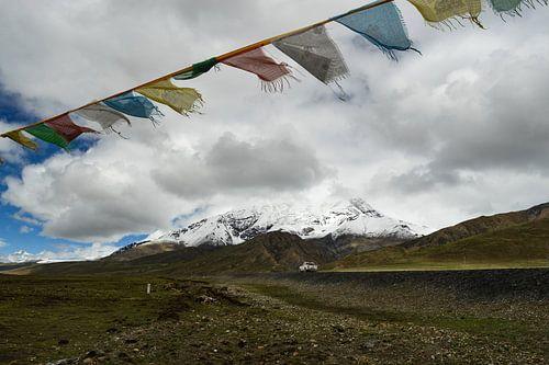 Wapperende gebedsvlaggetjes  op de Tibetaanse hoogvlakte van Zoe Vondenhoff