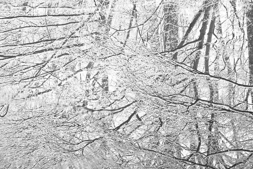 Sneeuw weerspiegeling in plas van Alice Sies