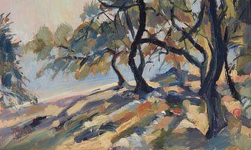 Olijfbomen aan het Marmari strand op Paxos van Nop Briex