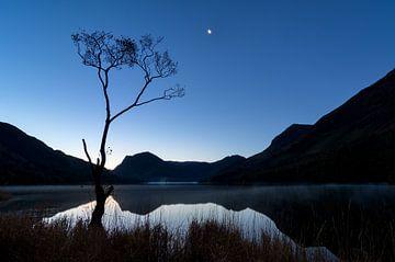 The Lone Tree at Buttermere von Jos Pannekoek