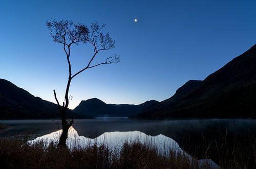 Eenzaam boompje aan Buttermere lake van Jos Pannekoek