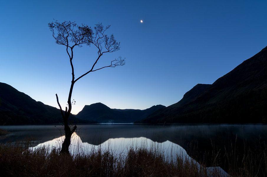 Eenzaam boompje aan Buttermere lake
