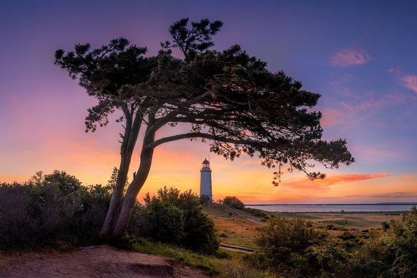 Morgenrot am Leuchtturm Dornbusch auf Hiddensee von Voss Fine Art Fotografie