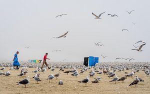 Meeuwen en mist hangen op het strand. van Urban Photo Lab