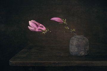 Modernes Stillleben Magnolie von Silvia Thiel