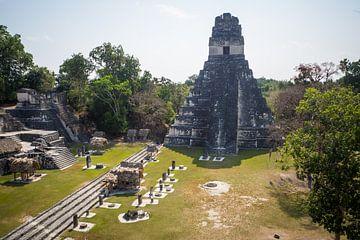 Tikal Guatemala Ruines van oude Mayastad van Michiel Dros