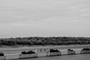 Zee Nieuwpoort van Stef De Vos