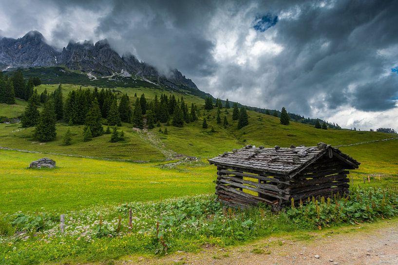 Alpine Meadow at Hochkonig van Harold van den Berge