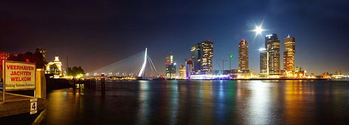 Skyline Rotterdam uitzicht op de Erasmusbrug