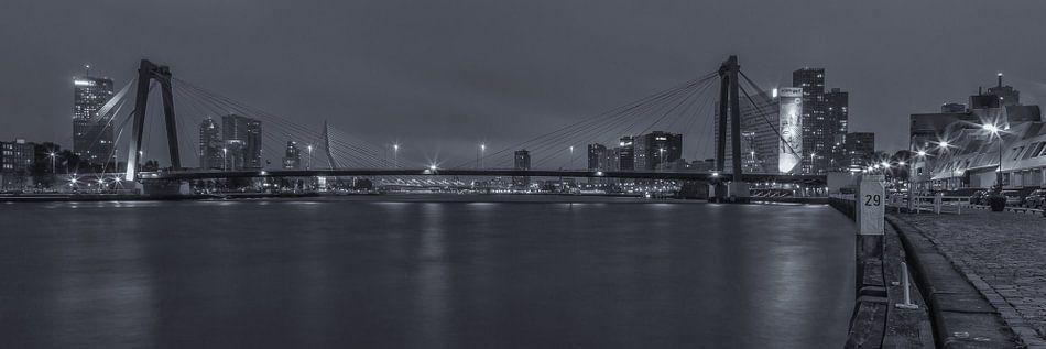 Skyline Rotterdam in Black and White