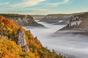 Nebel im Donautal von Michael Valjak