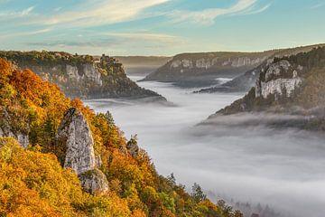 Mist in de Donauvallei van Michael Valjak
