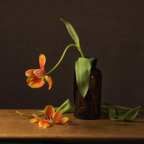 Stilleven oranje tulp van Monique van Velzen