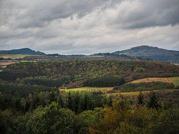 Landschap Luxemburg II van Tieme Snijders
