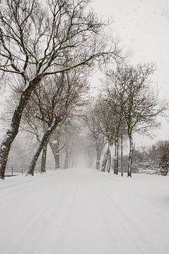 Snowflake Lane von Corina de Kiviet