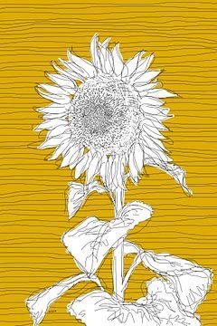 Sunflower sur Kris Stuurop
