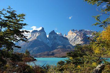 Blick durch den Torres del Paine Nationalpark in Patagonien, Chile von A. Hendriks