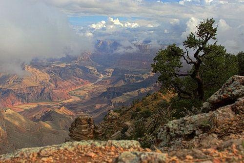 Colorado River in de Grand Canyon