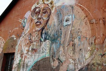 Streetart Kaapstad Zuid Afrika van Marieke Funke