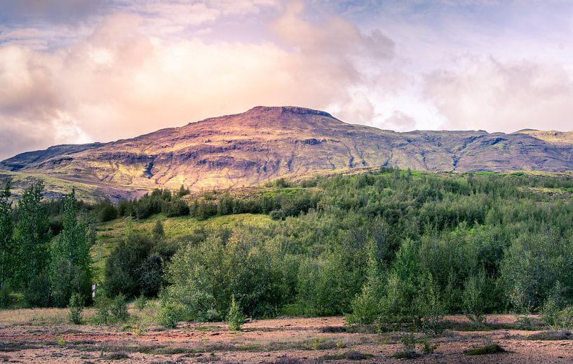 the mountain van Niels Hemmeryckx