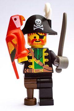 LEGO Kapitein Roodbaard met papegaai van Origami Art