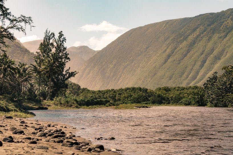 Hawaï-vallei van road to aloha
