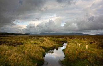 Torfmoore in Irland von Bo Scheeringa Photography