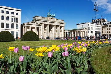 Porte de Brandebourg avec tulipes sur Frank Herrmann
